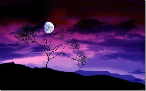 purplenightscape